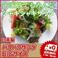 【送料無料】バリバリサラダビッグ大家族用のサラダボールたくさんサラダを食べるご家庭へ[オススメ][売れ筋]