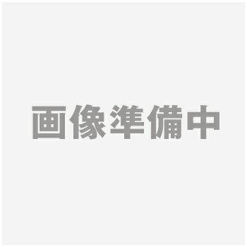 【代引き不可】 エアロマグネティックバイク AFB5212