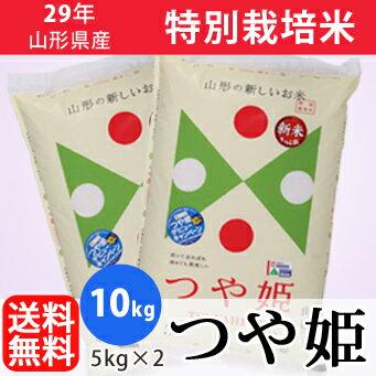 【白米】29年山形県産特別栽培米つや姫 10kg(5kg×2)【精米工場直送】【送料無料】