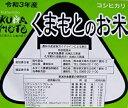 新米 令和3年産 分つき米 玄米 減農薬 米 5kgコシヒカリ 熊本県産 特別栽培米 送料無料お米 九州のお米 2
