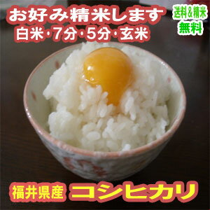 玄米 米 10kg 特Aコシヒカリ 福井県産 令和元年産 送料無料お米 分つき米