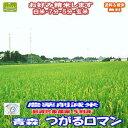 【送料無料】国産雑穀あま酒 250g 10袋入り