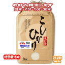 新米 分つき米 玄米 減農薬 米 5kgコシヒカリ 熊本県産 特別栽培米 令和元年産 送料無料お米 九州のお米