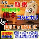 新米 令和3年産 分つき米 玄米 減農薬 米 5kgコシヒカリ 熊本県産 特別栽培米 送料無料お米 九州のお米 3