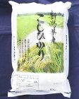 新潟県産こしひかり10kg