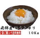 流通量が少ない隠れた美味米飛騨産こしひかり10kg