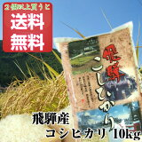 お米 10kg 飛騨産 コシヒカリ 特A 令和2年度産 白米 備蓄 保存食【2つご購入で送料無料!】
