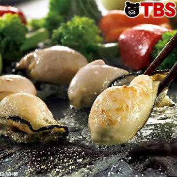広島県産の大粒冷凍牡蠣( 加熱用 ) / 850g / 広島 かき 牡蠣 国産 大粒 おおきい 大きい 海鮮 海産物 シーフード 蒸しガキ カキフライ 鍋 ご飯 BBQ バーベキュー 貝 濃厚 おいしい 美味しい クリーミー ぷりぷり 【TBSショッピング】