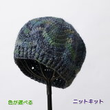 メイクメイクで編む山路模様の帽子 手編みキット オリムパス 編み図 編みものキット