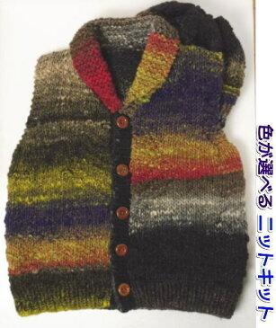 野呂英作のくれよんで編むキッズ用カウチン風ベスト 帽子付き 手編みキット 子供用100cm 人気キット