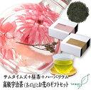 ハロウィン 【宅配便】ギフトセット お花 サムタイムズ47g...