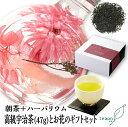 【宅配便】ギフトセットお花 朝茶47g+ハーバリウム(お花)...