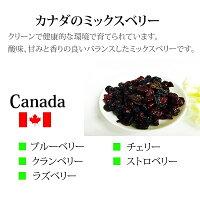 カナダ産3種類のドライフルーツ