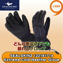SEALSKINZ Extreme Cold Weather Glove 121161714 防水グローブ
