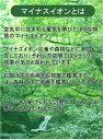 【受注生産品】 【代引不可】 モロー 【踊るサロメ】 [ac-1301] 世界の名画・高級複製画