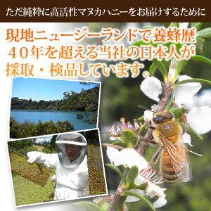 マヌカハニー30+楽天最高峰【活性強度20+・25+以上】【MGO800+】500g