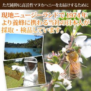 マヌカ蜂蜜【活性強度35+】【MGO1000+】500g
