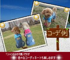 【訳あり】【B級品】【アウトレット】爽やかマリンTシャツ☆【小型犬用】【犬服】【激安】【RCP】