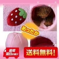【送料無料】かわいいドーム型ペットベッドイチゴ【超小型犬】【小型犬】【犬用】【猫用】(ピンク)【あす楽_土曜営業】