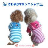 【訳あり】【B級品】【アウトレット】【メール便選択可】爽やかマリンTシャツ☆【小型犬用】【犬服 セール】【激安】【RCP】