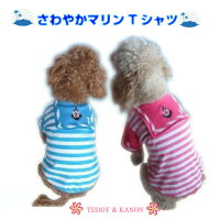 【訳あり】【B級品】爽やかマリンTシャツ☆【小型犬用】【犬服】【激安】【RCP】