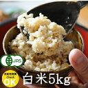 長野県産 JAS有機 れんげ米 白米・5kg