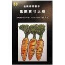 在来種/固定種/伝統野菜の種 黒田五寸人参8ml約1800粒/畑懐〔は...