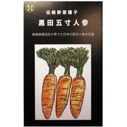 在来固定種野菜の種「黒田五寸人参」13ml〔約2300粒〕畑懐〔はふう〕