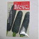 在来種/固定種/野菜の種「黒もちもろこし」50ml約100粒/畑懐〔は...