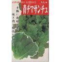 在来種/固定種/野菜のタネ「青チマサンチュ1ml約500粒」畑懐〔はふう〕の種【メール便可】