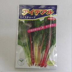 カラフルな茎が楽しめる。4〜10月蒔き在来固定種 野菜の種「スイスチャード〔西洋不断草〕」6m...