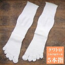 大法紡績 クワトロ 〔シルク&ウール〕 4層5本指靴下 【メール便可】