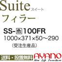 Ss_100fr