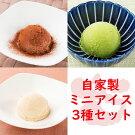 ミニアイス3種セットバニラアイス抹茶アイスチョコレートアイス