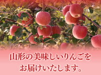 山形の美味しいりんごをお届けいたします。