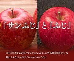 サンふじりんごとふじりんご