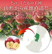 美味しい山形県産りんごをお届け