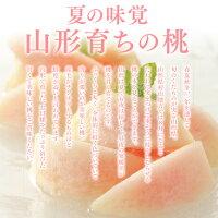 夏の味覚山形育ちの桃