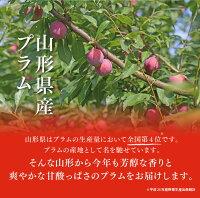 送料無料果物フルーツすももプラム山形県産秋姫約1.2kg(6〜10玉)※一部地域は別途送料追加秀品ギフトプレゼント