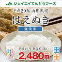 米 送料無料 新米 29年産 山形県産はえぬき無洗米5kg ...