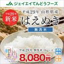 新米 送料無料【無洗米】 29年産米 山形県産米 はえぬき 20kg(5kg×4) ※一部地域は別途送料追加