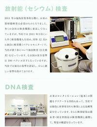 放射能(セシウム)検査