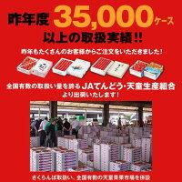 昨年度35,000ケース以上の取扱実績!!