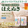 28年産 山形県産はえぬき無洗米10kg(5kg×2) 送料無料※一部地域は別途送料追加 お米 コメ 米 JA