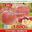 訳あり りんご 山形県産 品種おまかせ 約3kg 送料無料※一部地域は別途送料追加