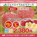 訳あり りんご 10kg 送料無料 山形県産 りんご 約10kg(28?56玉) ※一部地域は別途送料追加 フルーツ 果物 サンふじ あす楽 t02