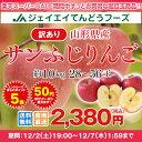 訳あり りんご 10kg 送料無料 山形県産 りんご 約10kg(28?56玉) ※一部地域は別途送料追加 予約商品 フルーツ 果物 サンふじ t02 果物
