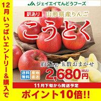 ≪ギフト≫山形県産りんご(こうとく)約5kg★約23玉〜30玉入り