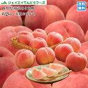 訳あり 桃 送料無料 山形県産 白桃 品種おまかせ約2kg(