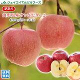 りんご 訳あり 10kg 送料無料 山形県産 サンふじりんご 約10kg(28〜56玉) バラ詰め ※一部地域は別途送料追加 フルーツ 果物 果物 ap13